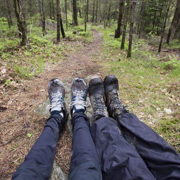 Vandra i tyst skog – 10 minuter från stan