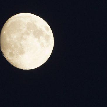 Helgens bästa: Missa inte superfullmånen på söndag