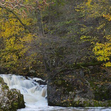 Lärjeåns vattenfall