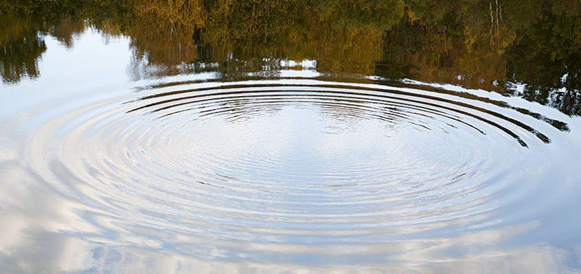 Vandra Lilla Delsjön runt