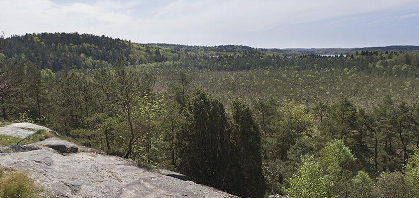 Utsiktsplats Hårskerödsutsikten