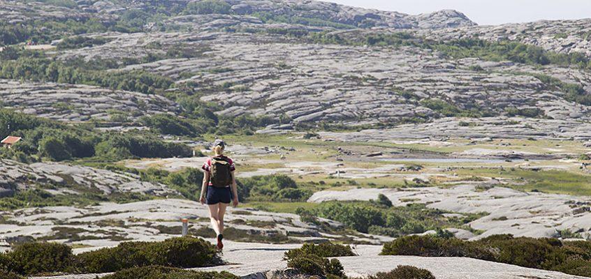Vandra norra Ramsvikslandet 7 km