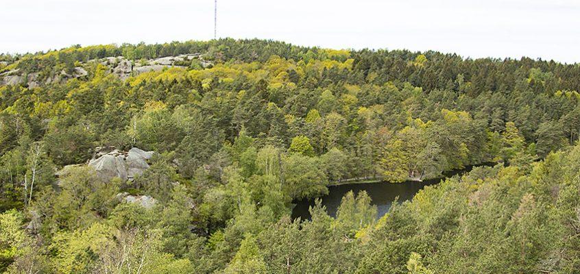 Vandra Hisingsparken 2km