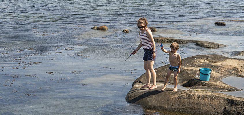 Jungfruviken Bland skogstunnlar och krabbor på Hönö Det