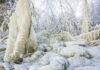 Häftiga naturupplevelser för vinterledigheten
